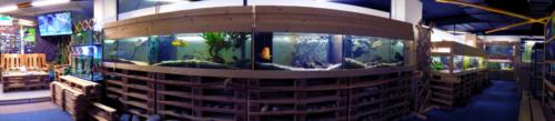 Akvárium (2)